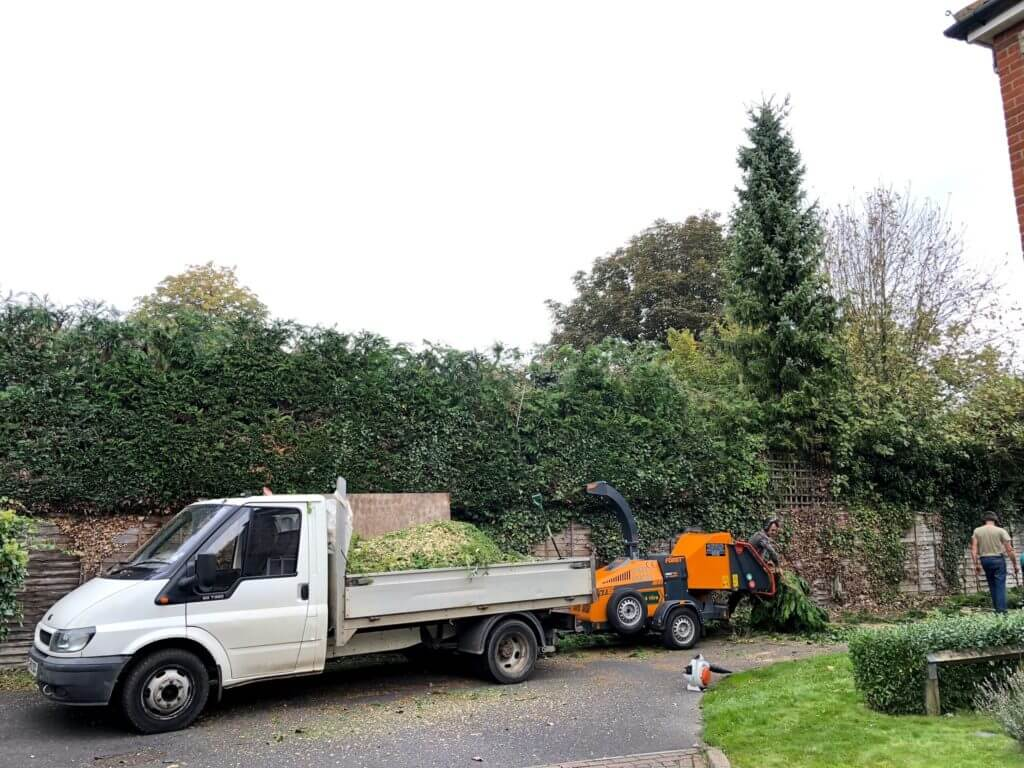 professional hedge trimming crew carrying out service
